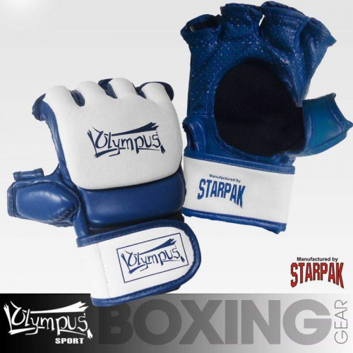 MMA Gloves Olympus AERO-TEC Training